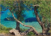 Die Natur in Griechenland
